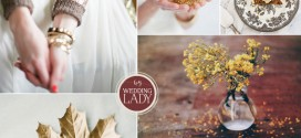 Cider and Spice Fall Wedding Inspiration Board
