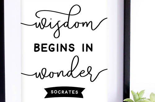 Your weekly free printable inspirational quote from Elegance and Enchantment! // Wisdom begins in wonder. - Socrates // Simply print, trim and frame this quote for an easy, last minute gift or use it to update the artwork in your home, church, classroom or office. #enchantingmondays